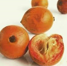 Agbalumo2.png